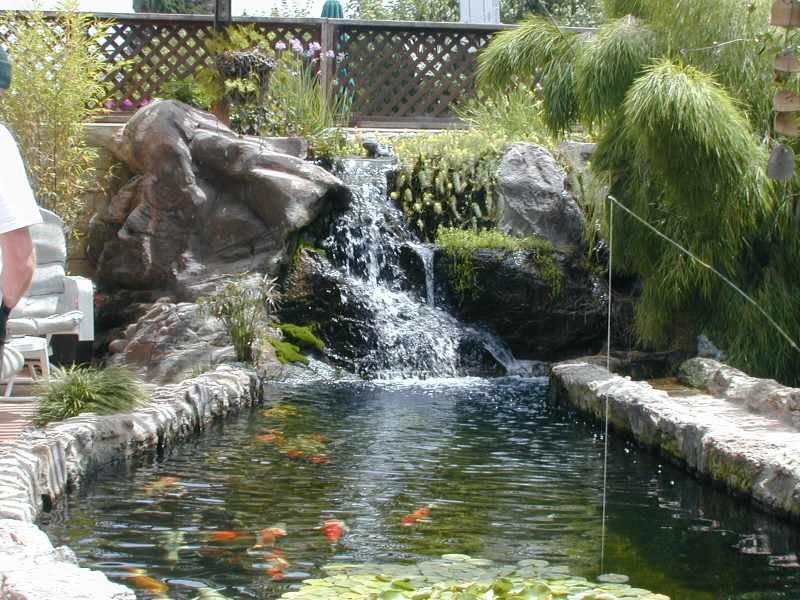 Mclaughlin 39 s pond for Cement fish pond