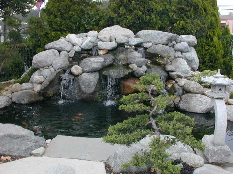 1 1 for Koi pond waterfall